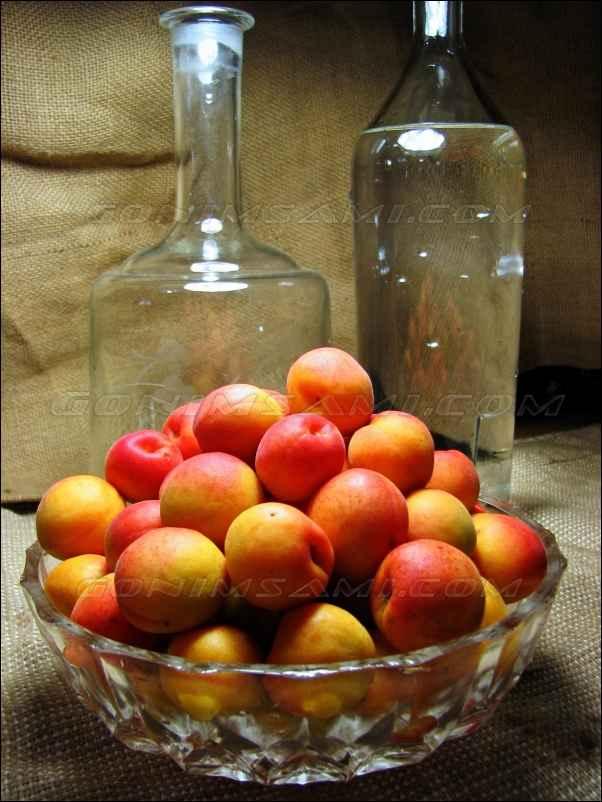 Готовим настойку самогона на абрикосах.