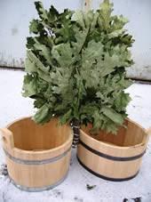Купить веник банный дуб, берёза, липа, эвкалипт. Доставка по Украине.